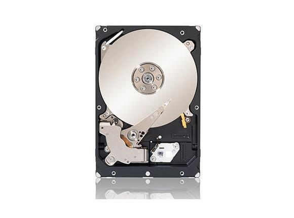 Твърд диск Seagate Constellation 500GB - 3